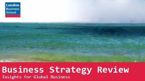 Business Strategy Review